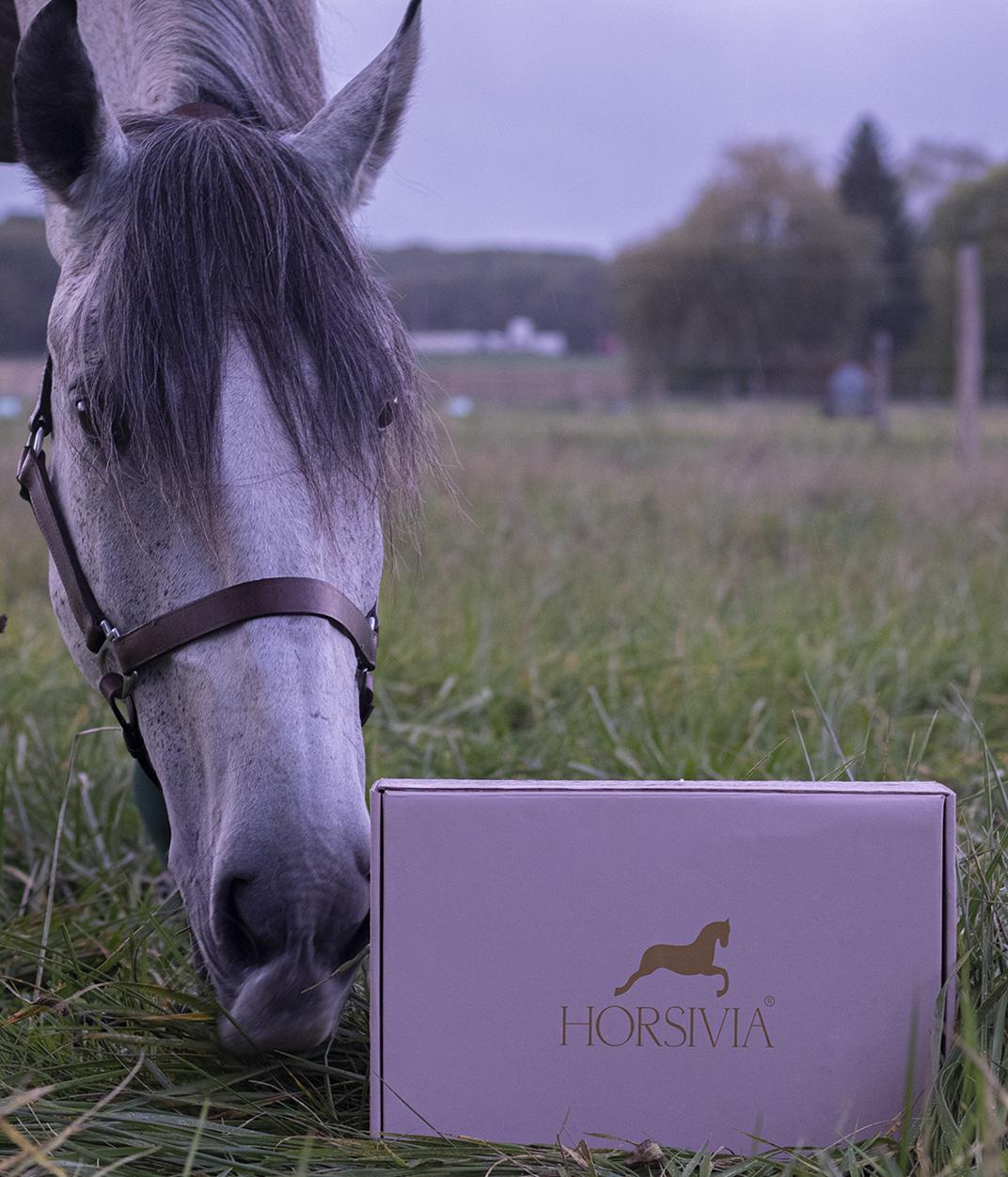 Une box mensuel, juste pour le plaisir de découvrir de nouveaux articles et accessoires avec votre cheval, juste pour le plaisir de passé du bon temps ensemble !